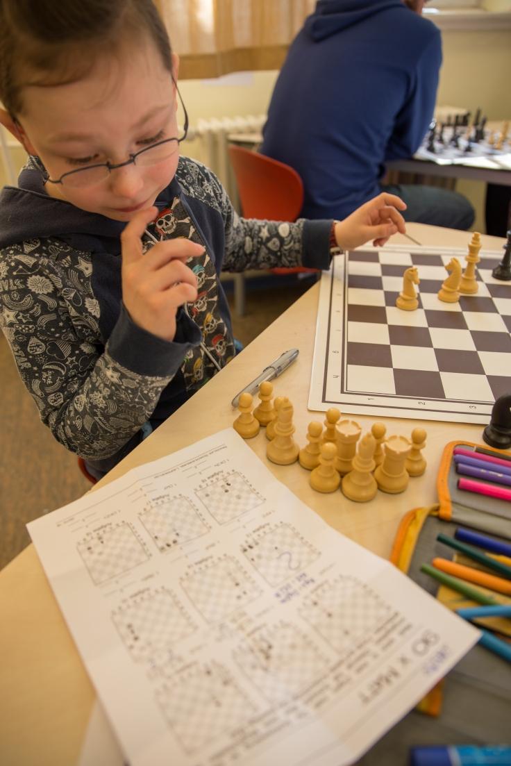 schachexperten (1 von 1)-2
